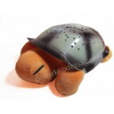 Черепаха Звездное небо>
